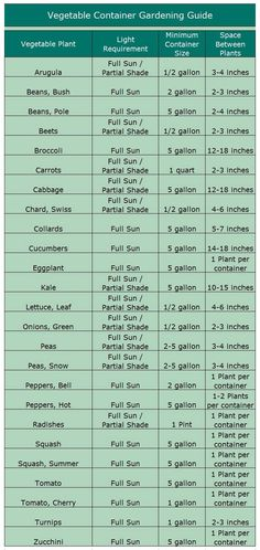 Save Money Growing Food In Small Spaces and Patios too! Gardening Guide for vegetable Container Gardening -this post has everything you need to know! The post Save Money Growing Food In Small Spaces and Patios too! appeared first on Garden Ideas. Growing Vegetables In Containers, Growing Veggies, Container Gardening Vegetables, Growing Plants, Fresh Vegetables, When To Plant Vegetables, Plant Containers, Winter Vegetables, Growing Flowers
