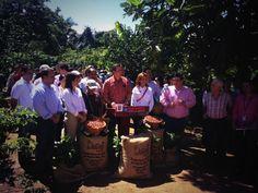 El Gobernador anunció una inversión de $4.2 millones para impulsar la industria cafetalera. Foto vía La Fortaleza.