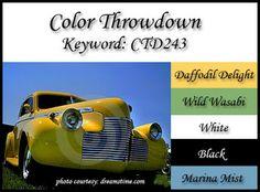 Color Throwdown: Color Throwdown #243