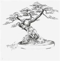 Bonsai Tree Sketch - Bing Images