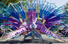 Caribana 2011           Carnival