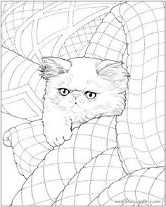 Bluecat Gallery - Adult coloring books by Jason Hamilton Free Adult Coloring Pages, Cat Coloring Page, Doodle Coloring, Animal Coloring Pages, Coloring Pages To Print, Coloring Book Pages, Mandala Coloring, Coloring Sheets, Cat Quilt