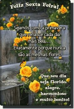 Bom Dia Feliz Sexta-feira GIF - ImagensBomDia.net Healthy Living Quotes, Day For Night, Album, Gifs, Portuguese, Irene, Pasta, Good Morning Friday, Happy Weekend