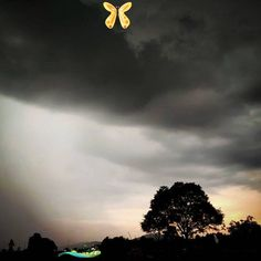 Tumblr In the falling rain: I learned to grow again.!!! #rain #nature #photography #rainyday #love #clouds #naturephotography #photooftheday #sky #weather #instagood #instagram #art #storm #water #photo #rainbow #travel #beautiful #raindrops #sunset #rainy #picoftheday #spring #ig #like #sun #flowers #raining #<br> Loading… // Sun Flowers, Water Photography, Rain Drops, Rainy Days, Weather, Rainbow, Clouds, Sky, Sunset