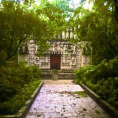 #mexico #df #photography #art