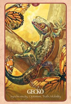 Example cards from  the Secret Language of Animals Oracle deck. DISCOVER MORE: http://www.tarotacademy.org/secret-language-of-animals-endangered-voices-of-mother-earth/