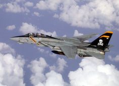 MILAVIA Aircraft - Grumman F-14 Tomcat - Picture Gallery