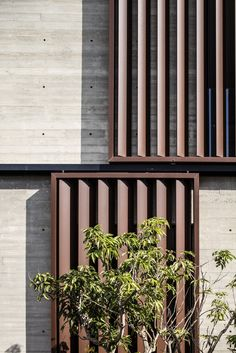 Bar Orian Architects Have Designed this Elegant and Contemporary Home in Tel Aviv, Israel Tel Aviv, Louvre Windows, Solar Shades, Concrete Houses, Interior Architecture, Architecture Details, Window Privacy, Window Shutters, Facade Design
