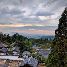 An afternoon sunset? Super cool view today #nara #japan #japanese #nihon #travel #temple #shrine #mindfulness #buddhism #peaceful #sunset #getoutside #freedom #picoftheday #photooftheday