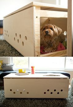 Modern pet crate / coffee table. Great space saver. #DIY instructions here http://blog.hgtv.com/design/2012/02/23/diy-dog-a-modern-pet-crate-coffee-table/