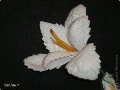 Поделка изделие Макраме Лилия для панно Булавка английская Клей Нитки фото 1