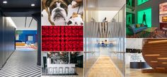 World's Coolest Offices 2014