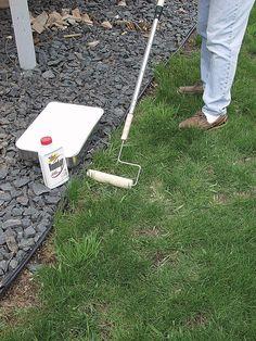 Garden weeding tips