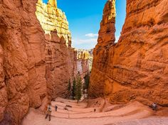 Bryce Canyon Image, Utah - National Geographic Photo of the Day