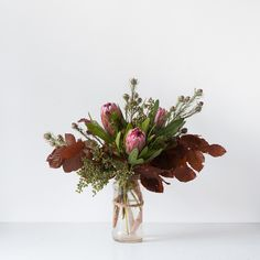 Pretty Protea – www.GreenMeadowsFlorist.com