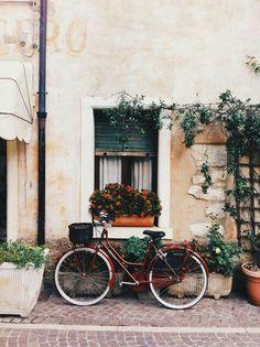 • bikes •