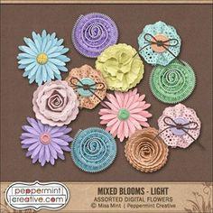 Mixed Blooms: Light