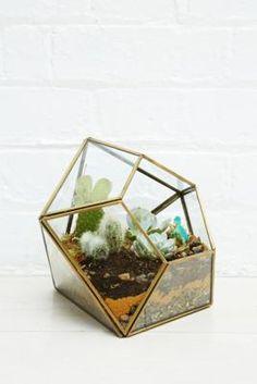 Urban Grow Diamond Terrarium Planter in Gold - Urban Outfitters