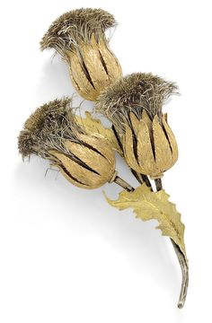 A thistle pin, by Mario Buccellati designed as a spray of three thistles enhanced by naturallistically textured sepals, stems, and extending three similarly textured leaves, length 10.0cm., signed M Buccellati.