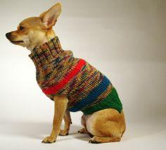 FRANJA ROJA  luxury brand la bamba dog sweater
