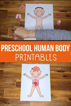 These preschool human body printables will teach your kids about the human body. Have your kids place the organs onto the body to see where the organs belong. Body Parts Preschool Activities, Body Preschool, Human Body Activities, Printable Activities For Kids, Preschool At Home, Kindergarten Activities, Human Body Science, Human Body Unit, Human Body Systems