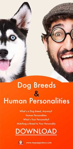 Dog Breeds and Human Personalities Free E-book   - Dog Breeds and Human Personalities  - What's a Dog Breed, Anyway?  - Human Personalities  - What's Your Personality?  - Matching a Breed to Your Personality  - Breeds for Introverts Breeds for Extraverts  - Dog Breeds and Human  - Personalities: Cheat Sheet  #mypuppystory #dogtraining #dog #puppy #dogs #dogbreed #dogtrainingtips  http://mypuppystory.com/