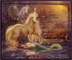 Beautiful Mermaid And Unicorn - mermaids Photo