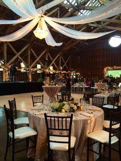Blush tables, mahogany chairs for a November wedding, gold accents, Pinehurst Fairbarn wedding