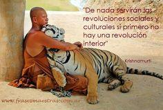 En plena revolución !!!