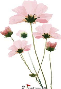 https://www.facebook.com/FlowerDreamer-1674639942775068/