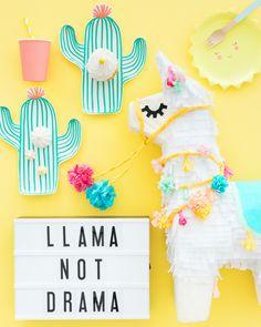 Llama Pinata Makeover