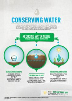 Conserving Water Infographic via Action for Ag