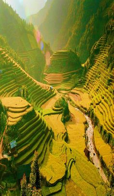 the inspiration about Places To Visit In Vietnam can just read this full article we had created for you. So check out Best Places To Visit In Vietnam. Visit Vietnam, North Vietnam, Vietnam Travel, Asia Travel, Sa Pa Vietnam, Laos Travel, Saigon Vietnam, Vietnam Tours, Beach Travel