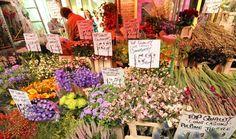London Columbia Road Flower Market