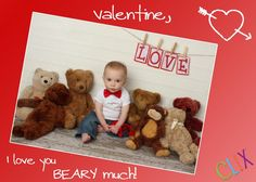 valentine photography bears