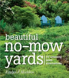 Beautiful No-Mow Yards: 50 Amazing Lawn Alternatives by Evelyn J. Presents alternative options to a grass lawn, discussing methods for converting a lawn to a garden, different types of gardens, and recommended plants. Low Maintenance Yard, Low Maintenance Landscaping, Grass Alternative, Unique Garden, Back To Nature, Dream Garden, Lawn And Garden, Rain Garden, Garden Projects