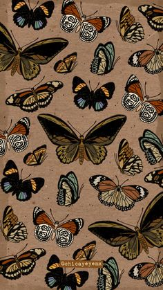 Iphone Background Wallpaper, Butterfly Wallpaper, Aesthetic Iphone Wallpaper, Galaxy Wallpaper, Screen Wallpaper, Aesthetic Wallpapers, Witchy Wallpaper, Hippie Wallpaper, Pastel Wallpaper