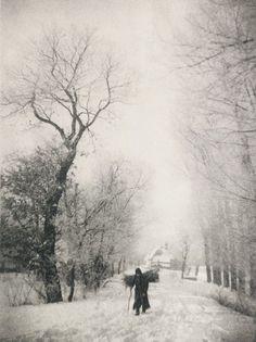Gathering wood. 1896 Photo: Julius Strakosch