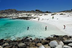 Beach of Isla Damas, North Chile