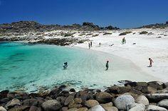 Beach of Isla Damas, North Chile
