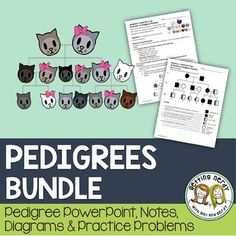 Pedigrees & Genetic Inheritance - PowerPoint and Handouts Our Pedigrees and Genetics Inheritance lesson helps students see how traits can be traced through family lineages and how they can be passed down through our ancestors to us. The lesson provides br Biology Lessons, Science Lessons, Life Science, Science Notes, Science Classroom, Teaching Science, Classroom Activities, Classroom Ideas, Family Lineage