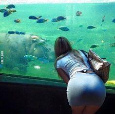 Fajne rybki! #fajne #rybki #fish