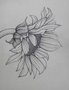 Pencil Art Work Sunflower Mixed Media Original por pencilartwork