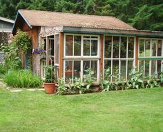 My greenhouse from reclaimed windows  Reclaimed windows available at Sleepy Poet!