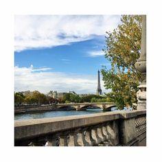 #paris #love #borboleta_official #parisshowroom #borboletainparis www.borboleta.co