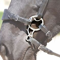 The Barefoot Treeless Saddles brand Bitless Bit attaches to the bridle in a similar way to a bit or hackamore. The BBB® lies flat against the horse's head and does not cause pinching when in use. Nose and chin straps separate. Natural bitless riding.