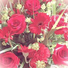 誕生日のバラの花 #バラ #花 #赤い花 #花束 #Flower #Rose#Vieludoの植物