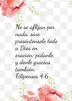 Words, Texts, Philippians 4 6, Stricken, Give Thanks, Prayers, Horse