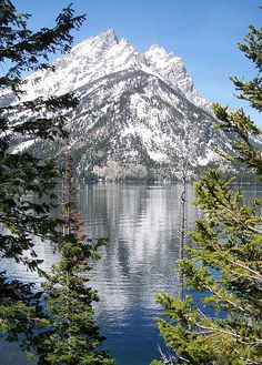 Jenny Lake, Grand Teton National Park, Wyoming I have a picture I took almost exactly like this reflection and all! Me too, what a beautiful place. All Nature, Amazing Nature, Beautiful World, Beautiful Places, Stunningly Beautiful, Absolutely Gorgeous, The Places Youll Go, Places To Go, Parque Natural