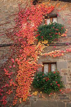 Autumn Wall - Rupit, Catalonia, Spain